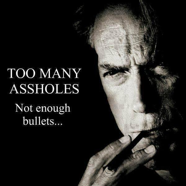 Too many assholes. Not enough bullets Picture Quote #1