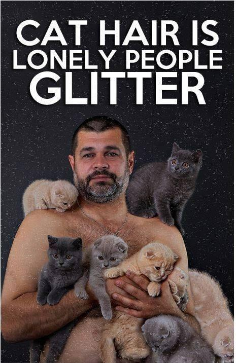 Cat hair is lonely people glitter Picture Quote #1
