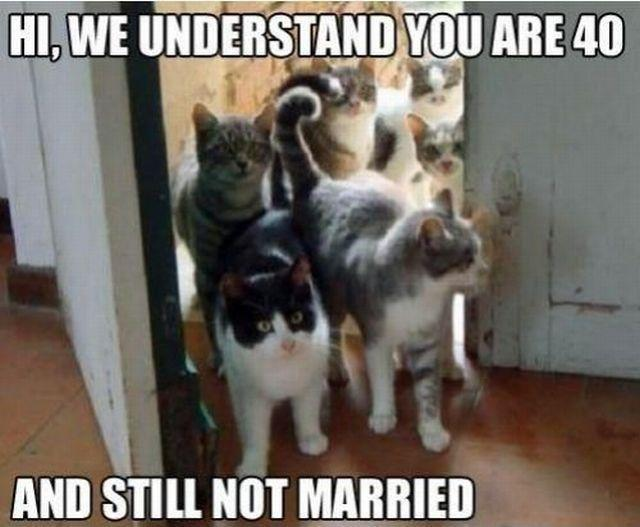 Hi, we understand you are 40 and not married Picture Quote #1