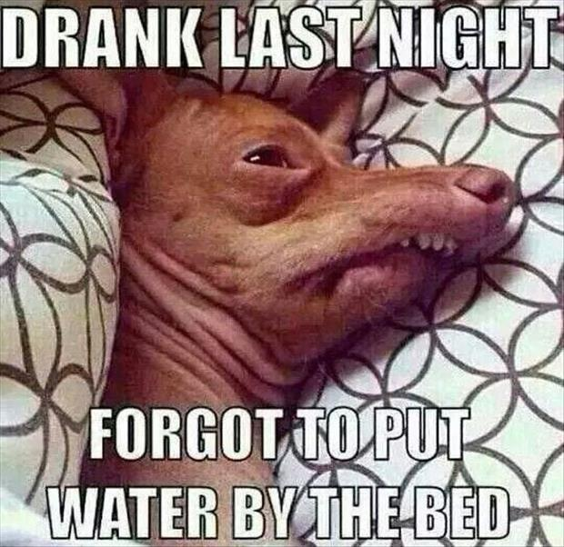 Drank last night. Forgot to put water by the bed Picture Quote #1