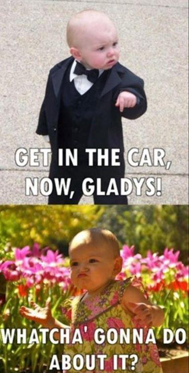 Get in the car, now, Gladys! Whatcha' gonna do about it? Picture Quote #1