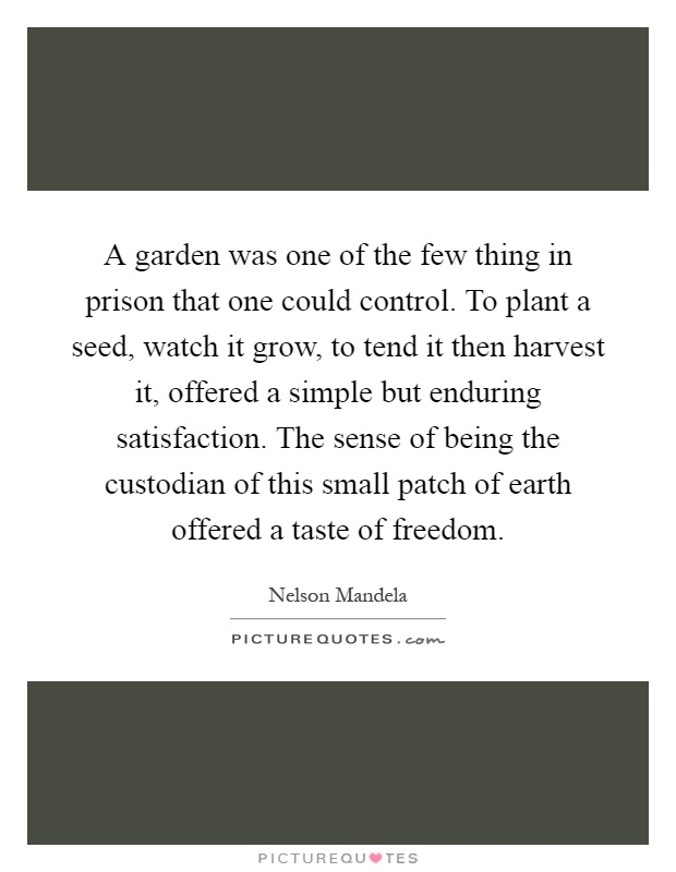A garden was one of the few thing in prison that one could control. To plant a seed, watch it grow, to tend it then harvest it, offered a simple but enduring satisfaction. The sense of being the custodian of this small patch of earth offered a taste of freedom Picture Quote #1