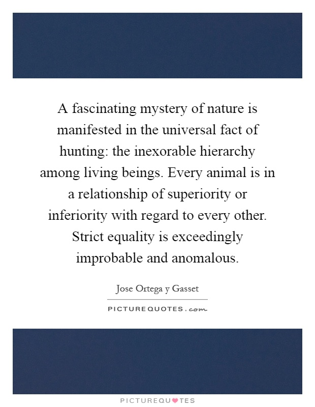 A fascinating mystery of nature is manifested in the universal fact of hunting: the inexorable hierarchy among living beings. Every animal is in a relationship of superiority or inferiority with regard to every other. Strict equality is exceedingly improbable and anomalous Picture Quote #1