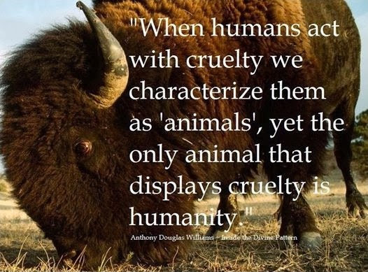 "When humans act with cruelty we characterize them as ""animals"", yet the only animal that displays cruelty is humanity Picture Quote #1"