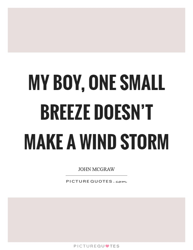 My boy, one small breeze doesn't make a wind storm Picture Quote #1