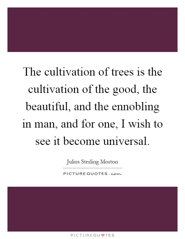 The cultivation of trees is the cultivation of the good, the beautiful, and the ennobling in man, and for one, I wish to see it become universal Picture Quote #1