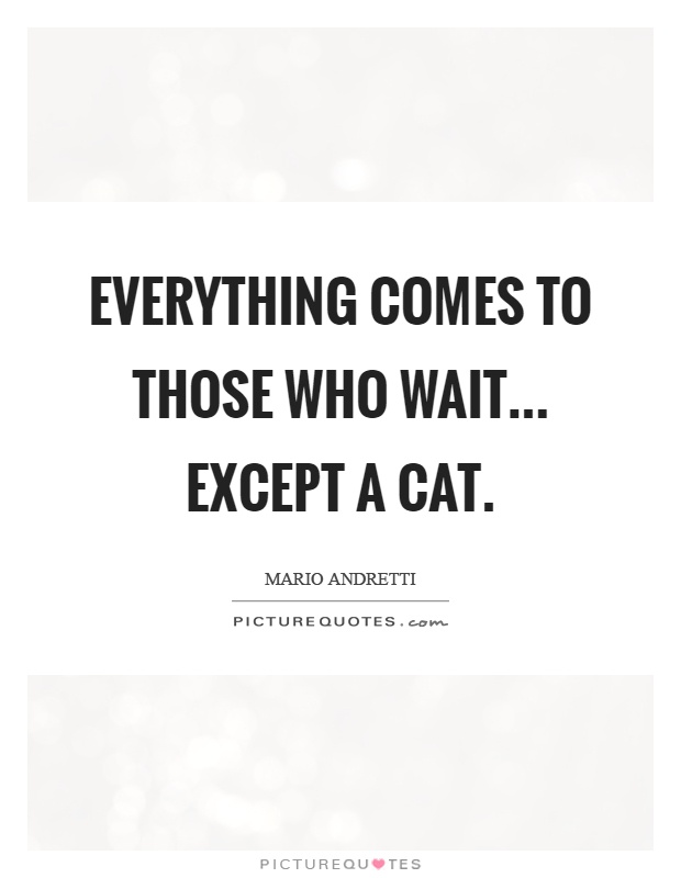 Everything comes to those who wait... Except a cat Picture Quote #1