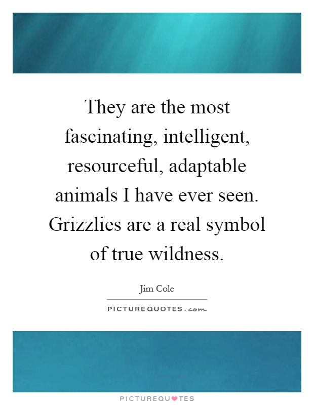 They are the most fascinating, intelligent, resourceful, adaptable animals I have ever seen. Grizzlies are a real symbol of true wildness Picture Quote #1