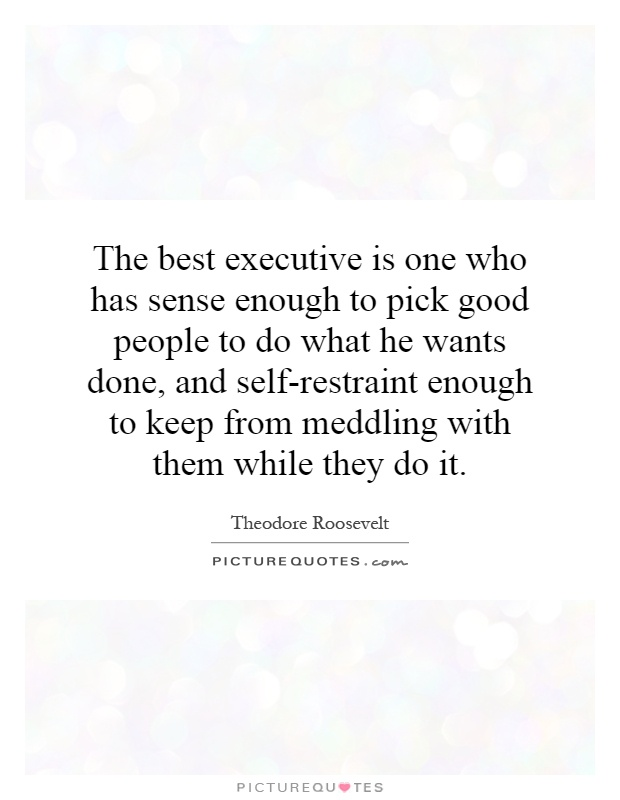 The best executive is one who has sense enough to pick good people to do what he wants done, and self-restraint enough to keep from meddling with them while they do it Picture Quote #1
