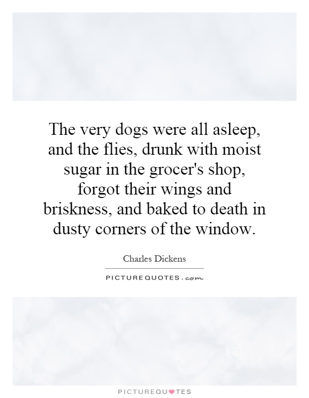 The very dogs were all asleep, and the flies, drunk with moist sugar in the grocer's shop, forgot their wings and briskness, and baked to death in dusty corners of the window Picture Quote #1