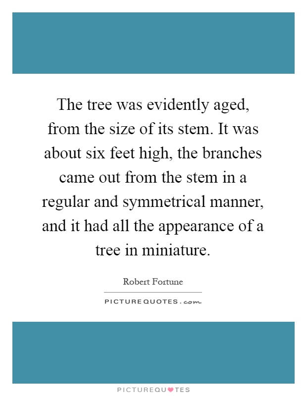 The tree was evidently aged, from the size of its stem. It was about six feet high, the branches came out from the stem in a regular and symmetrical manner, and it had all the appearance of a tree in miniature Picture Quote #1