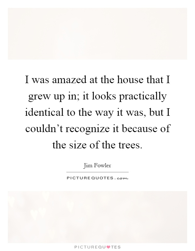 I was amazed at the house that I grew up in; it looks practically identical to the way it was, but I couldn't recognize it because of the size of the trees Picture Quote #1
