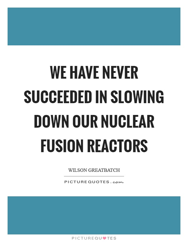 We have never succeeded in slowing down our nuclear fusion reactors Picture Quote #1