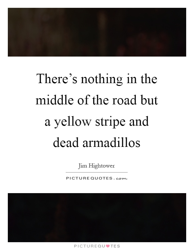 a literary analysis of theres nothing in the middle of the road but yellow stripes and dead armadill