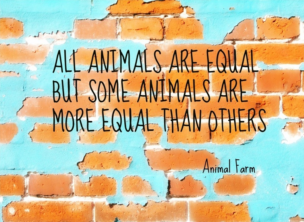 Animal Farm Quotes Classy Animal Farm Quote  Quote Number 536484  Picture Quotes