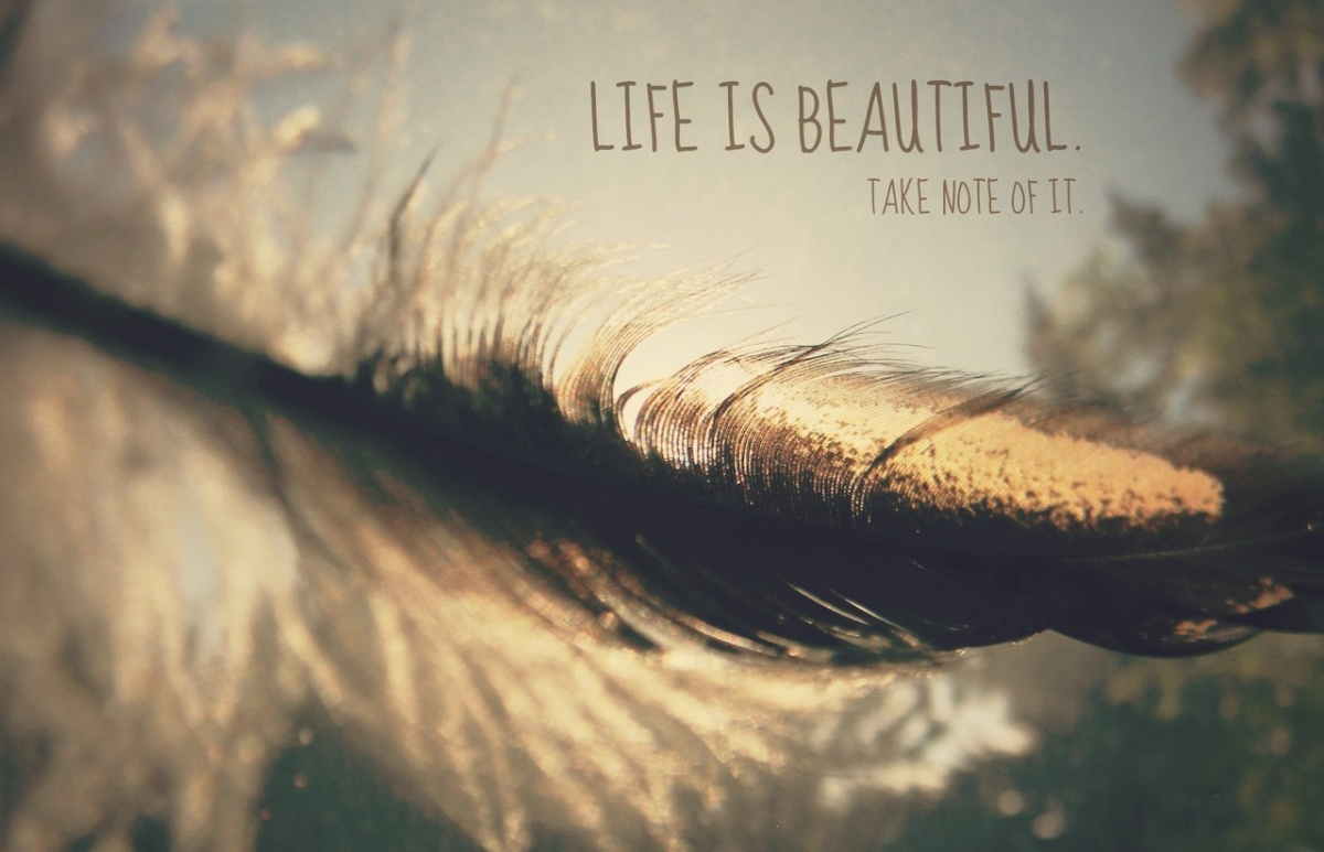 Beautiful Life Quote Picture 1