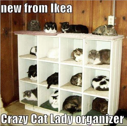 New from Ikea - crazy cat lady organizer Picture Quote #1
