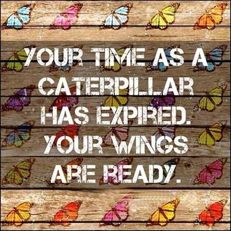 Your time as a caterpillar has expired. Your wings are ready Picture Quote #1