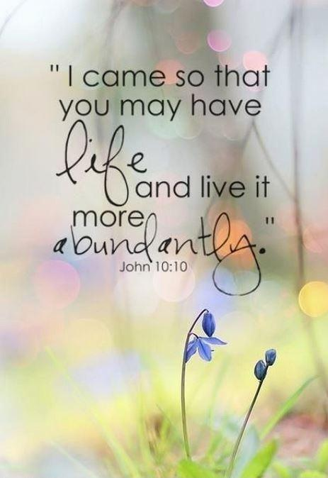 I came so that you may have life and live it more abundantly Picture Quote #1
