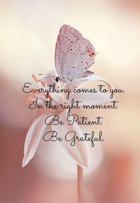 Everything comes to you in the right moment. Be patient. Be grateful Picture Quote #1