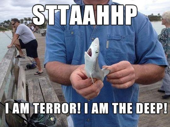 Sttaahhp. I am terror! I am the deep! Picture Quote #1