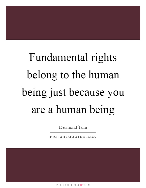 Fundamental rights belong to the human being just because you are a human being Picture Quote #1