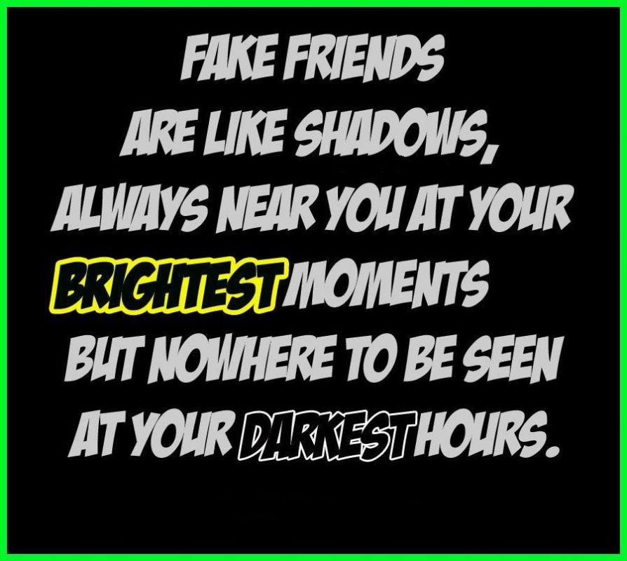 Fake Friends Quote Picture Quote #1