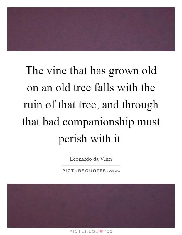 Vine Picture Quotes