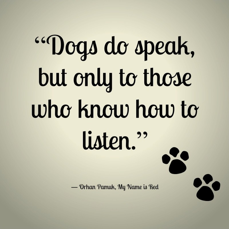 Dogs do speak, but only to those who know how to listen Picture Quote #1