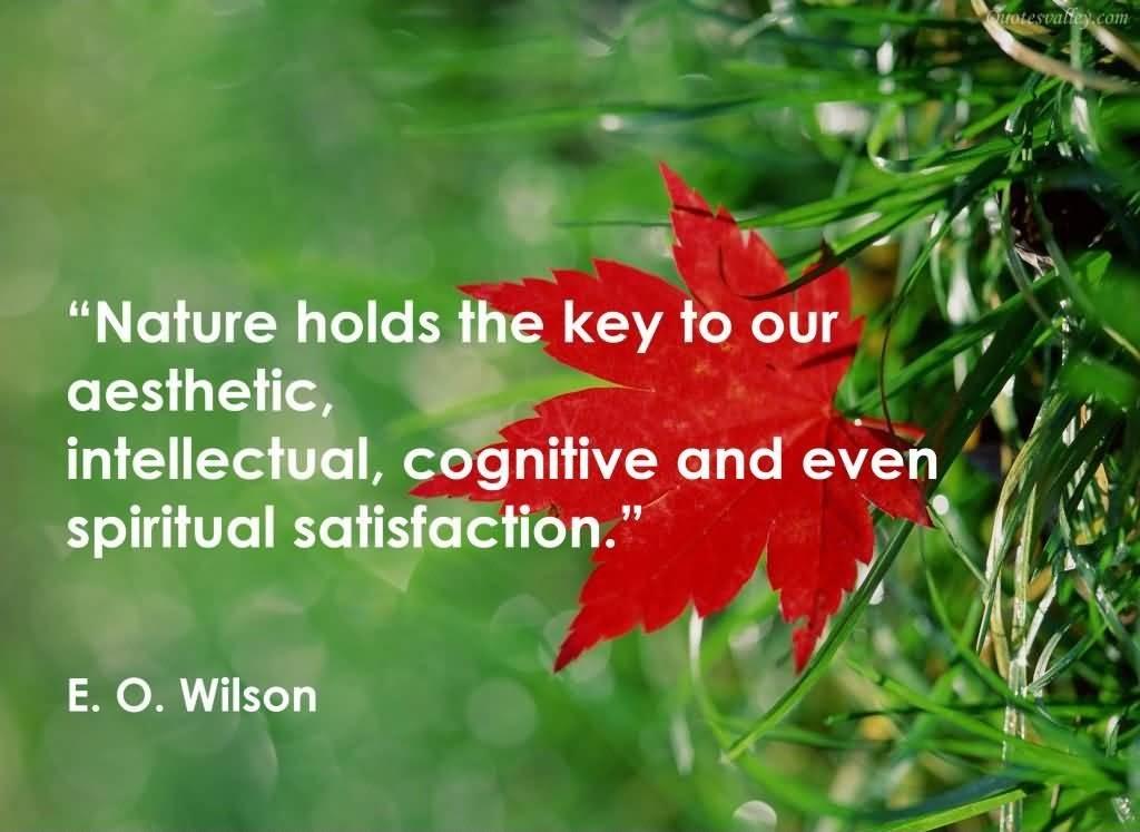 Nature Quote Picture Quote #1