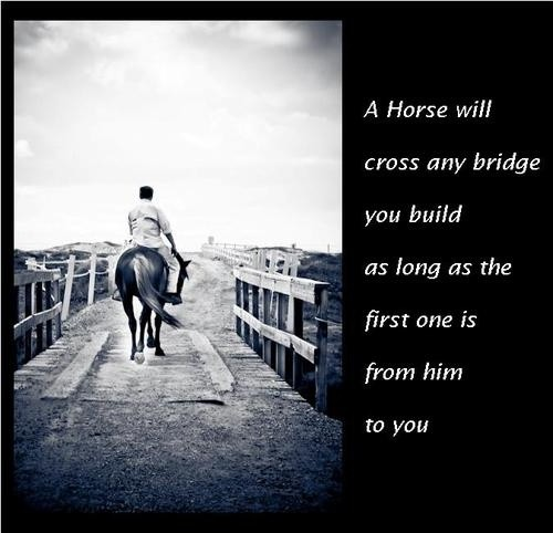 Horse Quote Picture Quote #1