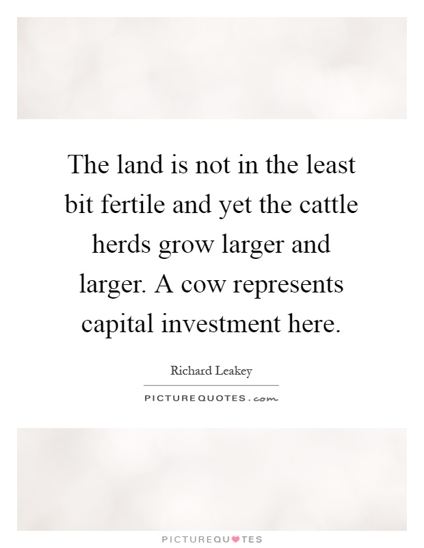 The land is not in the least bit fertile and yet the cattle herds grow larger and larger. A cow represents capital investment here Picture Quote #1