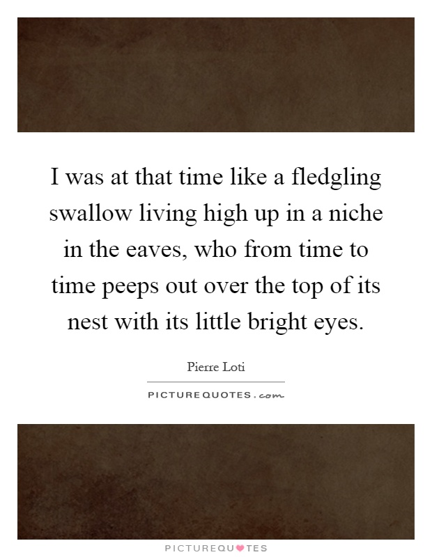 I was at that time like a fledgling swallow living high up in a niche in the eaves, who from time to time peeps out over the top of its nest with its little bright eyes Picture Quote #1