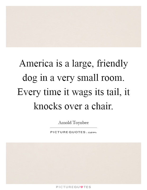 America is a large, friendly dog in a very small room. Every time it wags its tail, it knocks over a chair Picture Quote #1