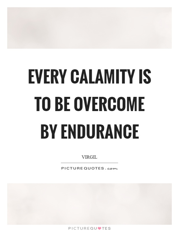 Every calamity is to be overcome by endurance Picture Quote #1