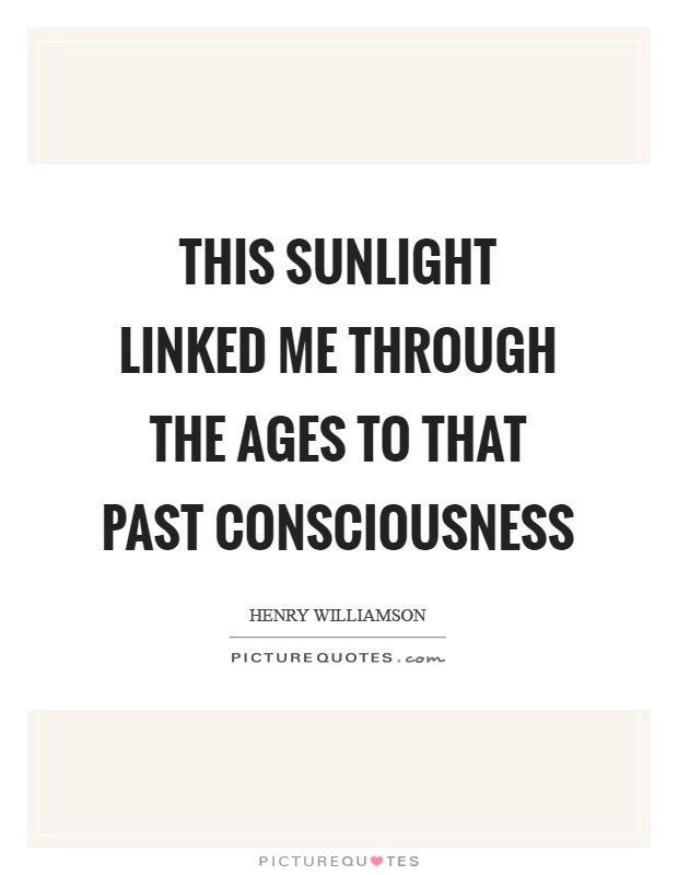 This sunlight linked me through the ages to that past consciousness Picture Quote #1