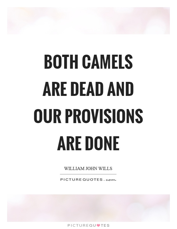 Both camels are dead and our provisions are done Picture Quote #1