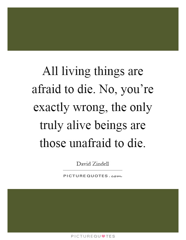 You Are Afraid To Die And Afraid To Live