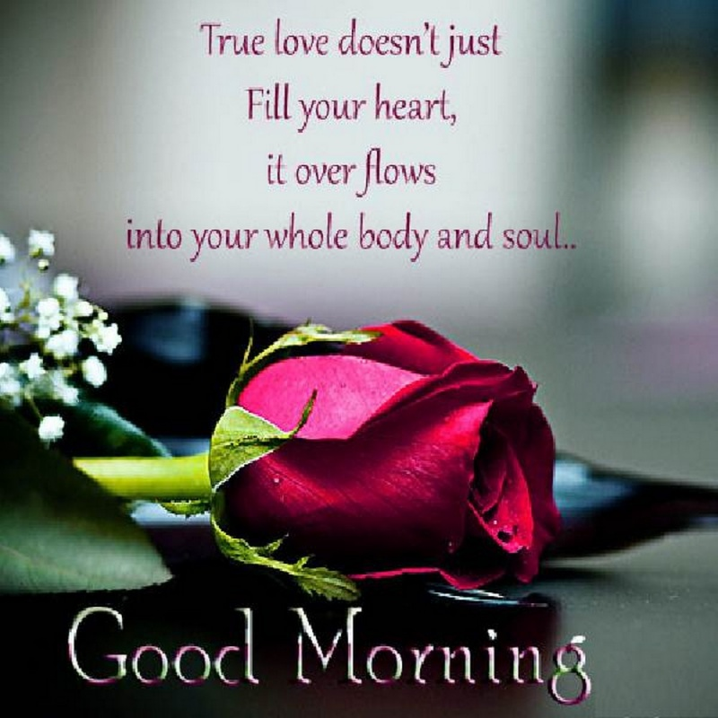 Good Morning Quotes For Her Alluring Good Morning Quotes For Her Quote  Quote Number 548039  Picture .