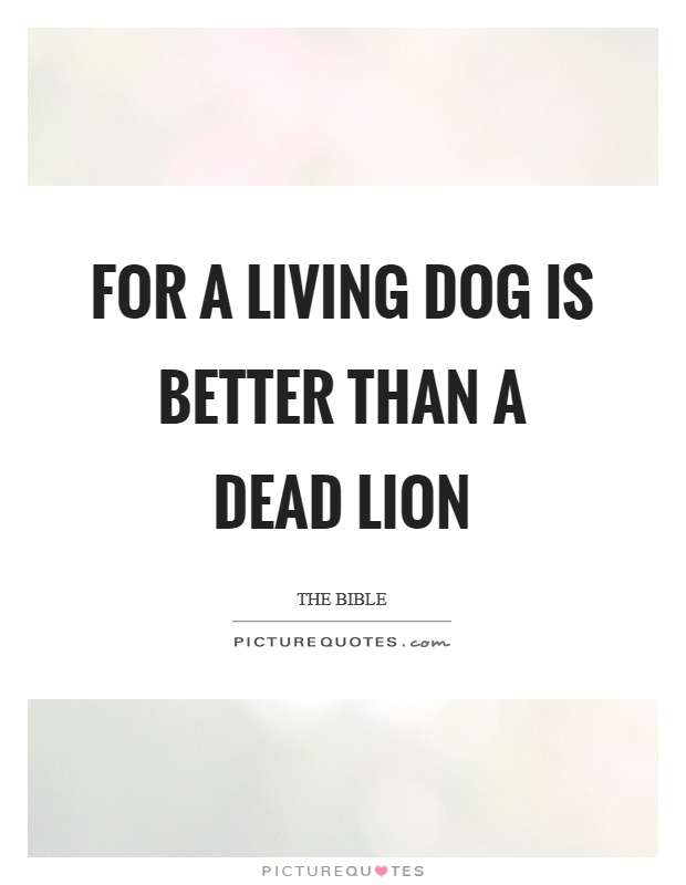 For a living dog is better than a dead lion Picture Quote #1