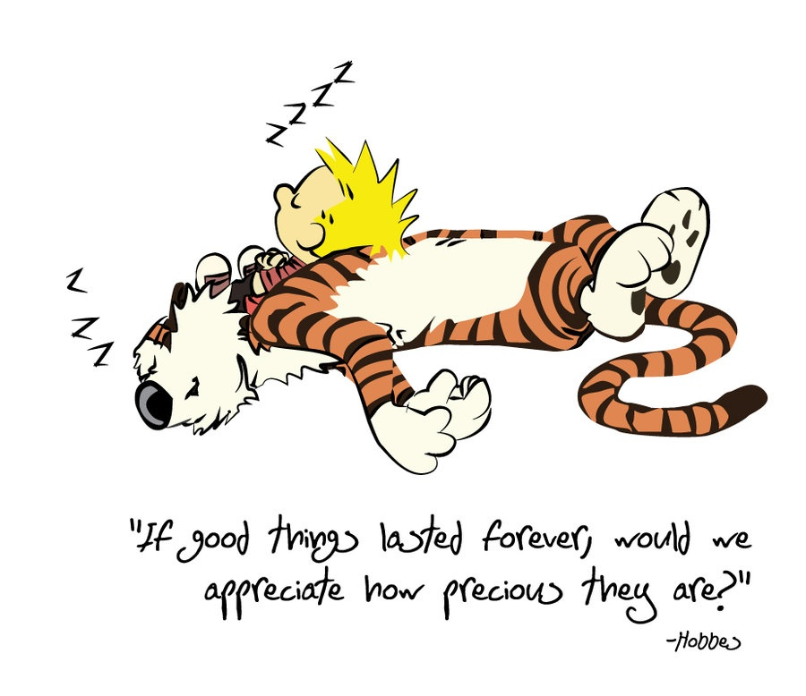 Calvin And Hobbes Quote Picture Quote #1