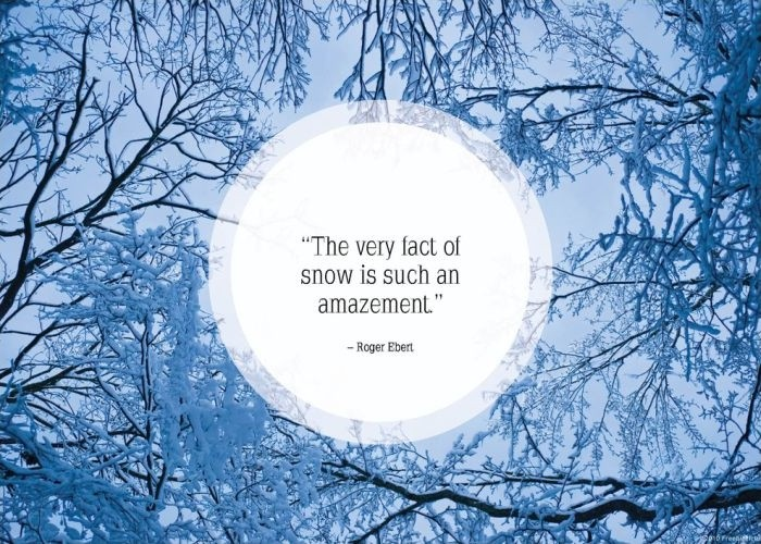 Winter Quote Picture Quote #1