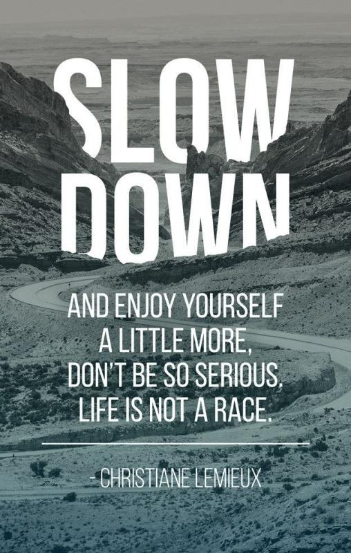 Slow down and enjoy yourself a little more, don't be so serious. Life is not a race Picture Quote #1