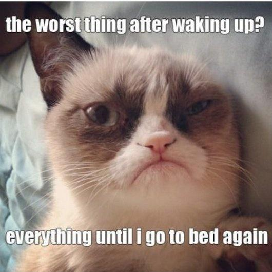 The worst thing after waking up? Everything until I go to bed again Picture Quote #1