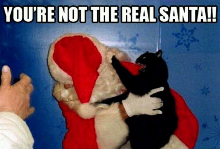 You're not the real Santa!! Picture Quote #1