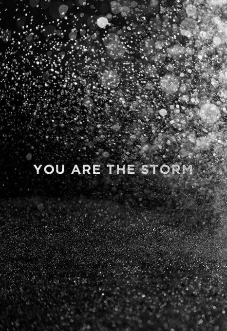 You are the storm Picture Quote #1