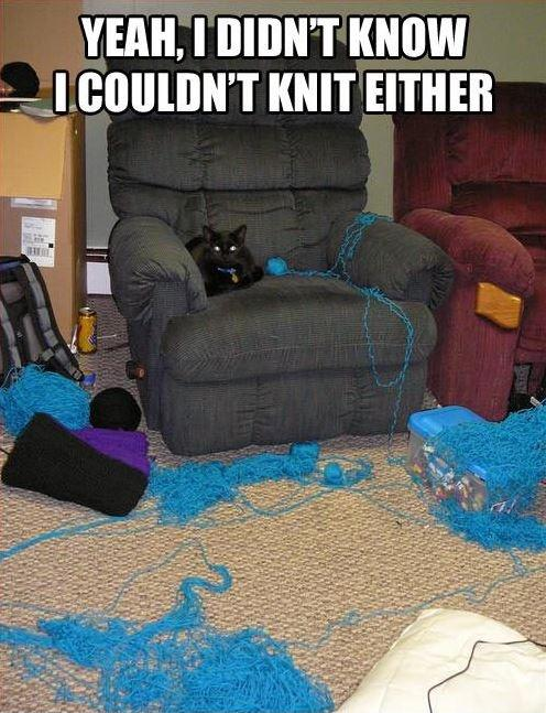 Knitting Funny Facts : Yeah i didn t know couldn knit either picture quotes
