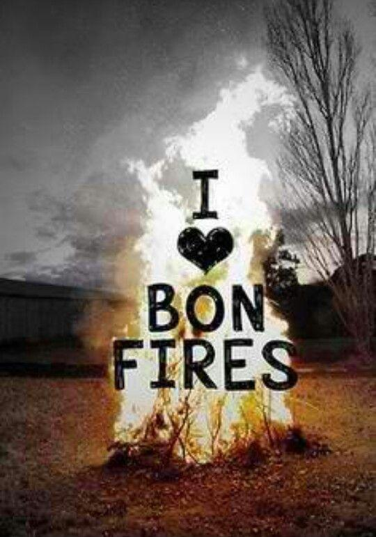 I love bonfires Picture Quote #1