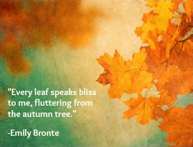 Autumn Quote Picture Quote #1