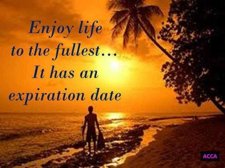 Quotes About Enjoying Life Best Enjoy Life Quote  Quote Number 549791  Picture Quotes
